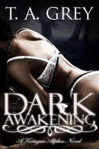 Dark Awakening final